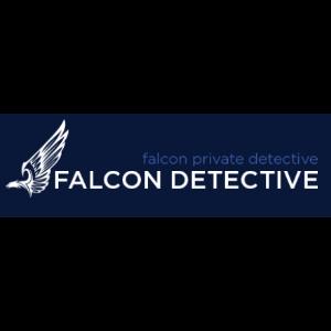 Falcon detective